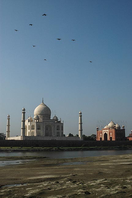 Monuments- Taj Mahal, Agra (India) - Back side view of Taj Mahal, with blue sky and river yamuna flowing at Agra, Uttar Pradesh, India. by Anil