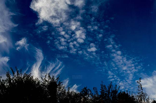 Clouds- Sky with Clouds (Lansdowne) - Clouds over Lansdowne, Uttarakhand, India- November 24, 2016: Dark blue sky with white clouds performing dance early in the morning over Lansdowne, Uttarakhand, India. by Anil Sharma Fotography