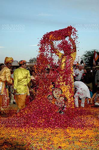 Festivals- Holi and Elephant Festival (Jaipur) - Local people sprinkling rose and merigold petals on Radha-Krishana at Holi and Elephant Festival at jaipur, Rajasthan (India). by Anil