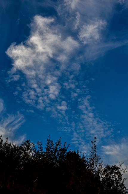 Clouds- Sky with Clouds (Lansdowne) - Clouds over Lansdowne, Uttarakhand, India- November 24, 2016: Dark blue sky with white clouds performing dance early in the morning over Lansdowne, Uttarakhand, India. by Anil