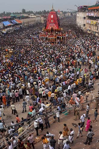 Festivals- Jagannath Rath Yatra (Odisha) - Massive chariot of Lord Balbhadra surrounded by thousands of enthused pilgrims, for Jagannath Rath Yatra festival at Puri, Odisha, India. by Anil