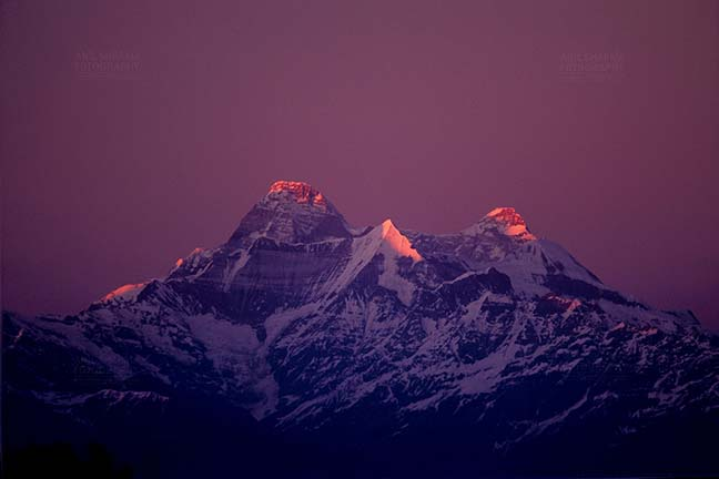 Mountains- Nanda Devi Peak (India) - Pinkish Nanda Devi Peak in Kumaon Himalayas in Uttarakhand, India. by Anil