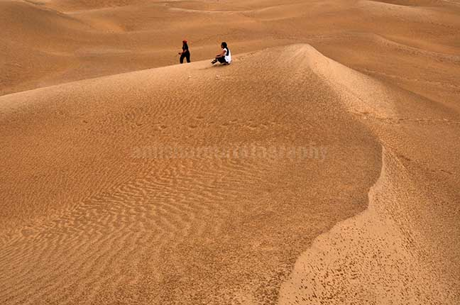 Festivals- Jaisalmer Desert Festival, Rajasthan - Tourists enjoying the beauty of golden sand dunes of Thar desert in Jaisalmer. by Anil