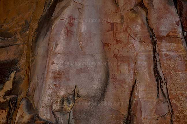 Archaeology- Bhimbetka Rock Shelters (India) - Prehistoric Rock Paintings of different animals at Bhimbetka archaeological site, Raisen, Madhya Pradesh, India by Anil