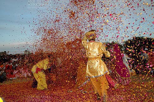 Festivals- Holi and Elephant Festival (Jaipur) - Local people celebrating Holi Festival with flowers at Holi and Elephant Festival at jaipur, Rajasthan (India). by Anil