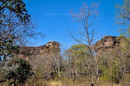 Archaeology- Bhimbetka Rock Shelters (India) - Entrance to Bhimbetka archaeological site in Ratapani Sanctuary of Raisen District of Madhya Pradesh, India.