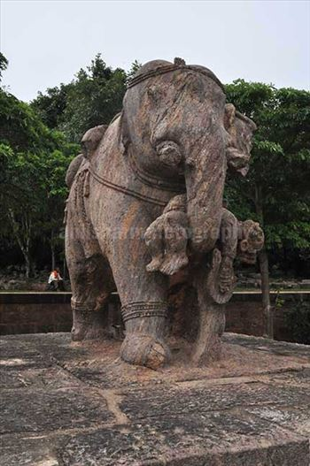 Richly carved stone sculpture of an elephant holding his wounded master with his trunk at Konark Sun Temple near Bhubaneswar, Orissa, India.