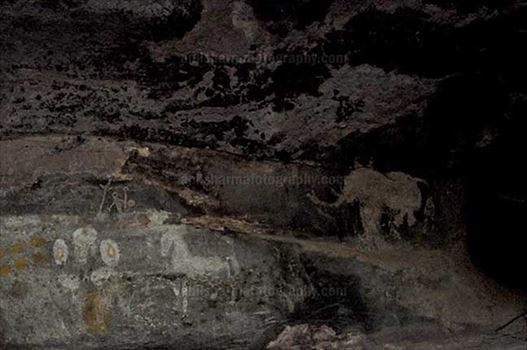 Archaeology- Bhimbetka Rock Shelters (India) - Prehistoric rock painting of a glopping horse and an Elephant in white color at Bhimbetka, Raisen, Madhya Pradesh, India
