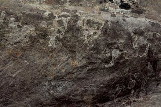 Archaeology- Bhimbetka Rock Shelters (India) - Prehistoric Rock Painting of a shepherd with their cattle herd in white color at Bhimbetka archaeological site, Raisen, Madhya Pradesh, India