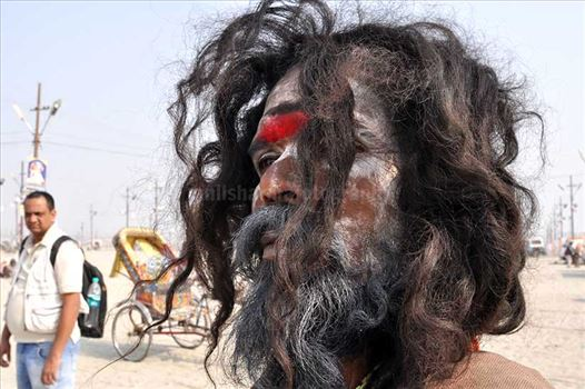 Culture- Aghori Sadhu, Uttar Pradesh (India). - Close-up of a Aghori Sadhu with long hairs, wearing rudraksha bead at Mahakumbh, Allahabad, Uttar Pradesh, India.